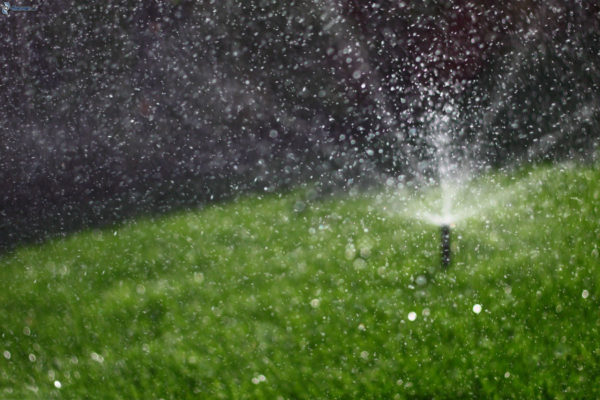 irrigation-lawn-drops-of-water