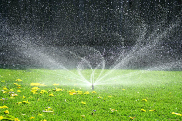 landscape-and-garden-sprinkler-system4