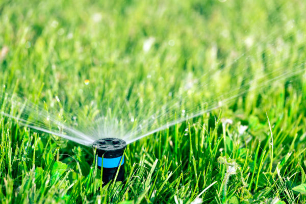 lawn-water-sprinklers-2
